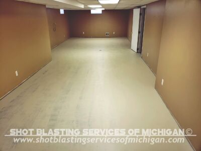 Shot Blasting Services Of Michigan Full Broadcast Chip Basement 02 2020 01 02